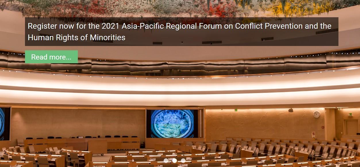 UN Forum on Minority Issues database